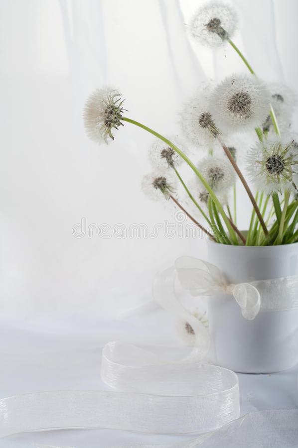 Dandelions. Stillife with dandelions on the table royalty free stock photos