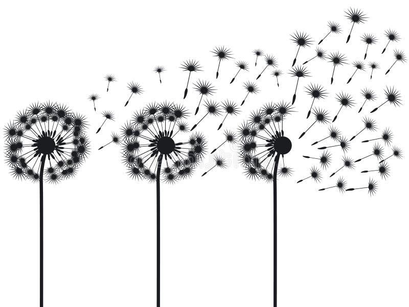 dandelions trzy ilustracja wektor
