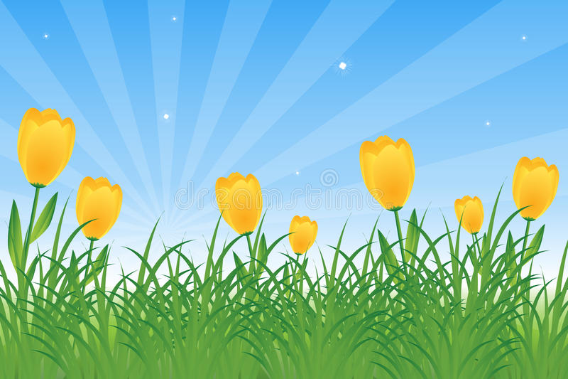 dandelions tulipany royalty ilustracja