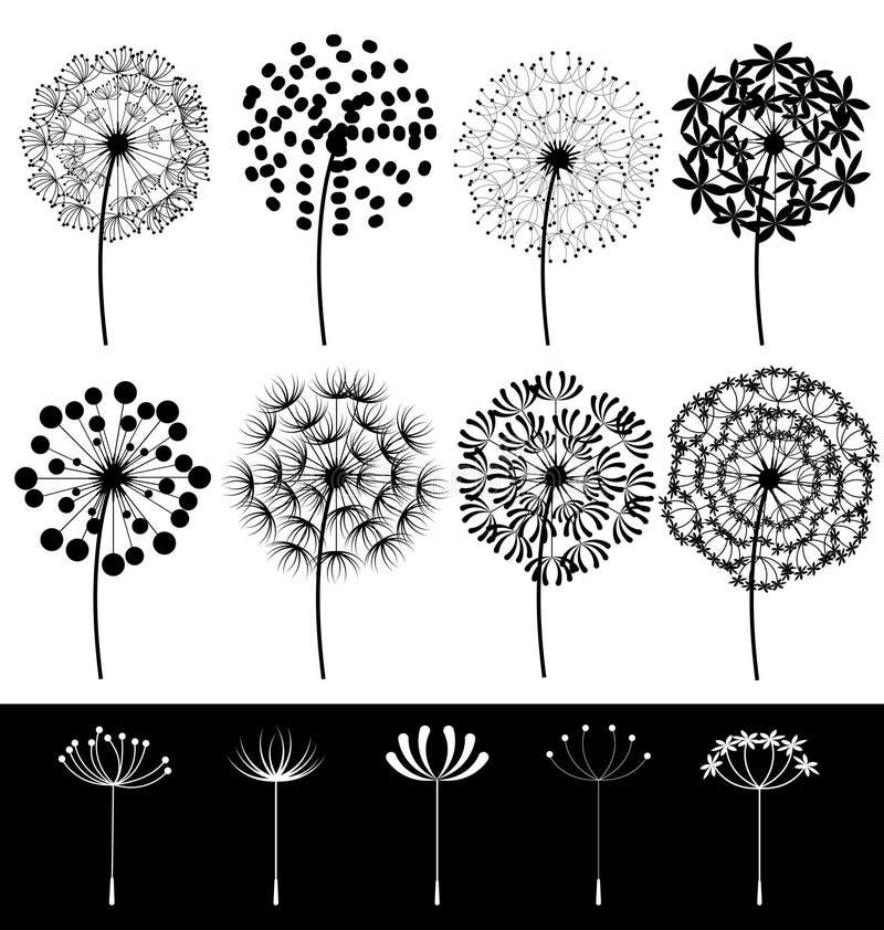 Dandelions ustawiający royalty ilustracja