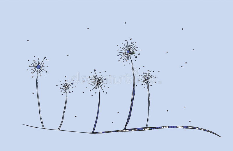 Dandelions Vector royalty free stock images