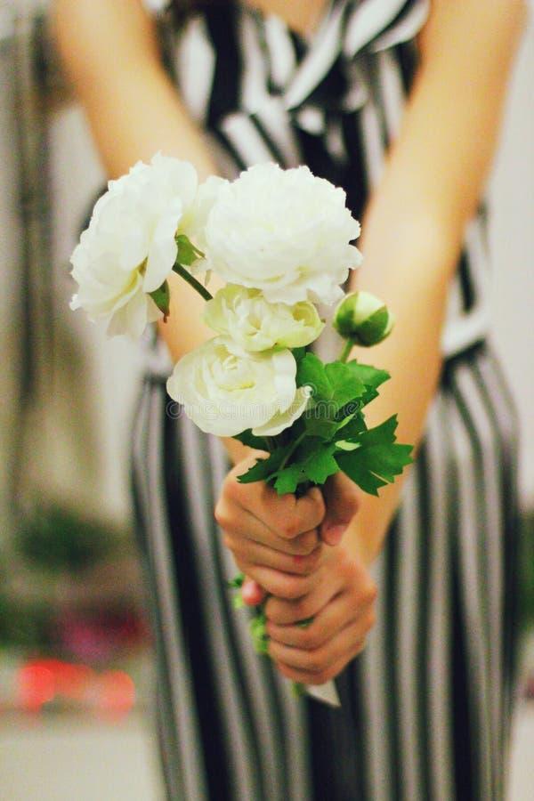 Dando as flores brancas fotos de stock royalty free