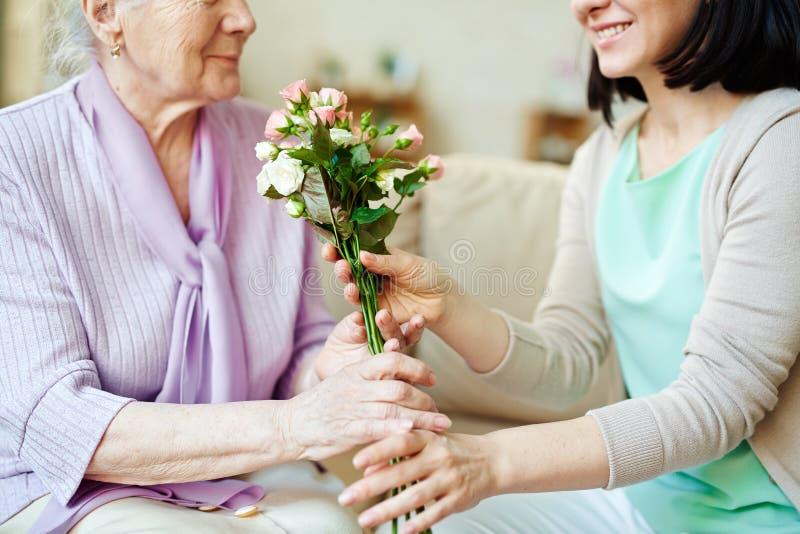 Dando rosas frescas fotos de stock royalty free