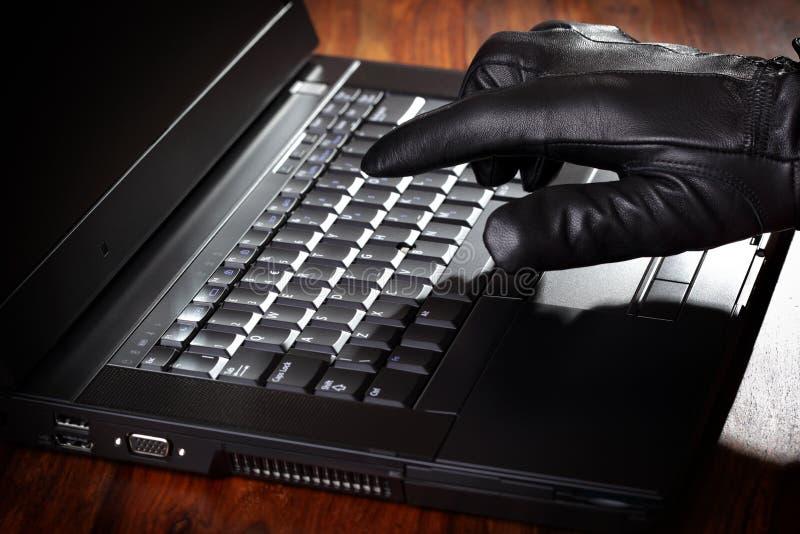 dane laptopu mężczyzna target233_0_ obraz royalty free