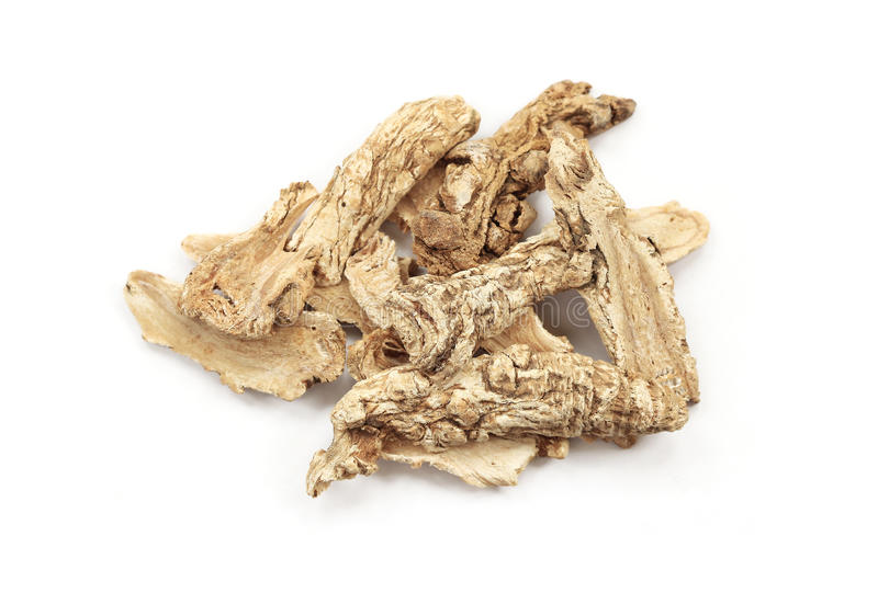 Dang Gui Ginseng (Angelica Sinensis) royalty free stock photography