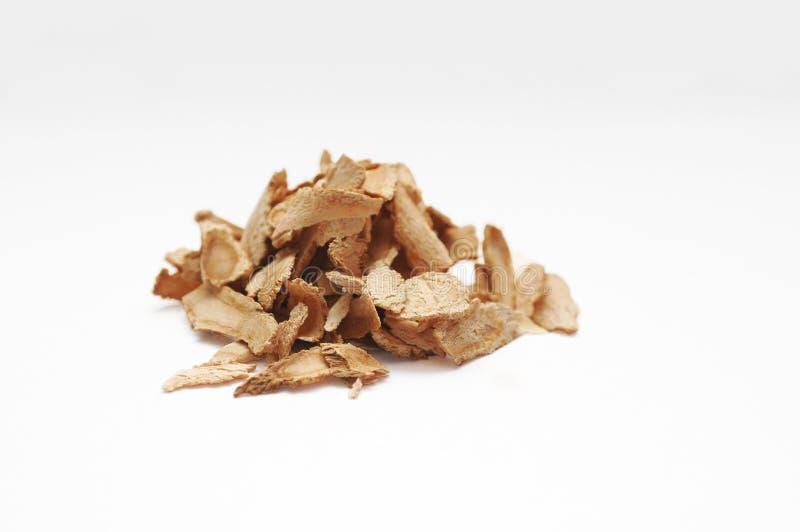 Dang Gui (Herbal Remedy) royalty free stock image