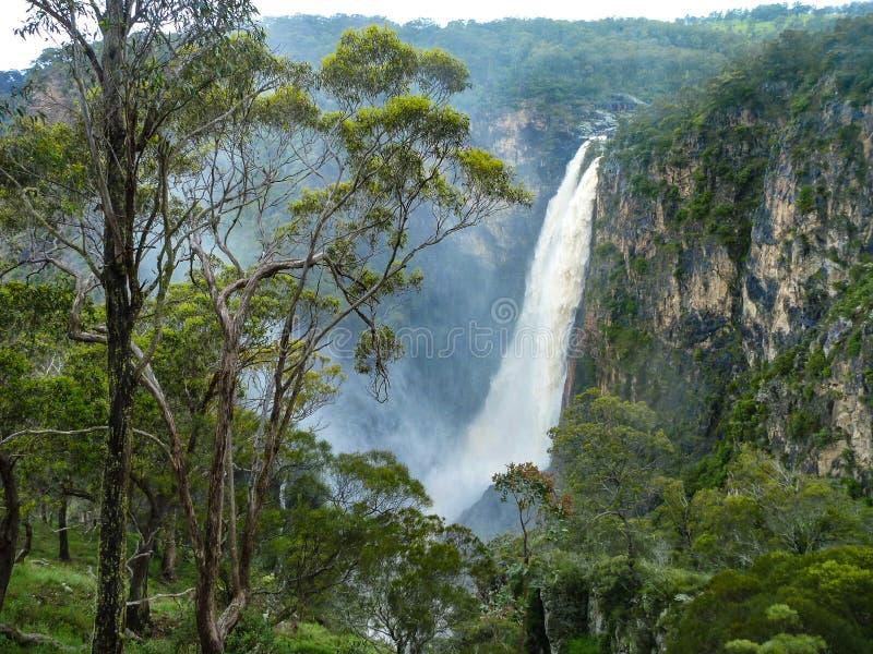 Dangars nedgångar, Armidale, NSW, Australien royaltyfria bilder
