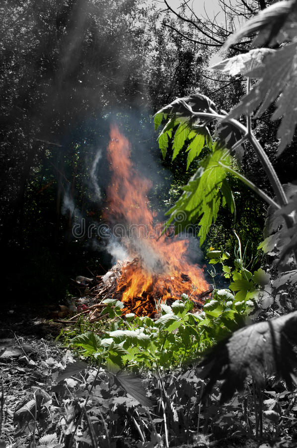Download Danger in the environment stock image. Image of loss - 21143143