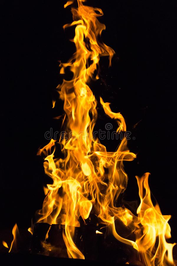 Dangerous games with fire. Devilish flame. The fire of hell. Background from dancing tongues of fire. Fire hazard. Fire safety. Passionate love. Bask around the stock photography