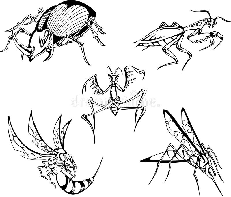 Download Dangerous Insects Royalty Free Stock Photography - Image: 24741167