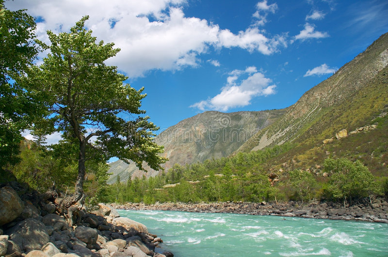 Download Dangerous river-01 stock photo. Image of rocky, attraction - 465910