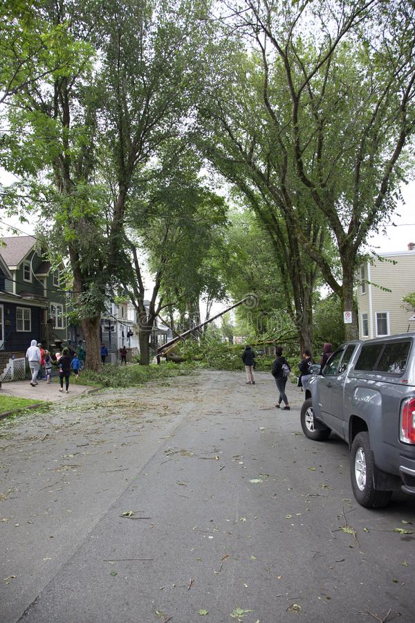 Dangerous trees and power lines in Halifax royalty free stock photos