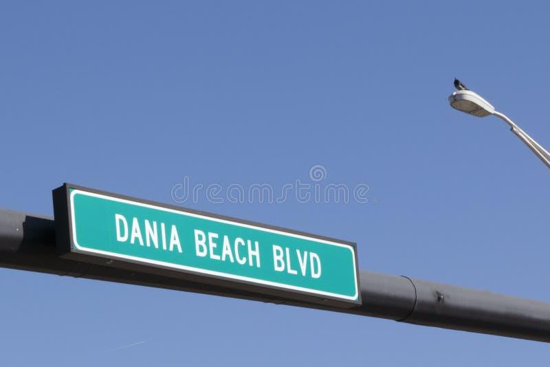 Dania Beach Boulevard Sign lizenzfreie stockbilder