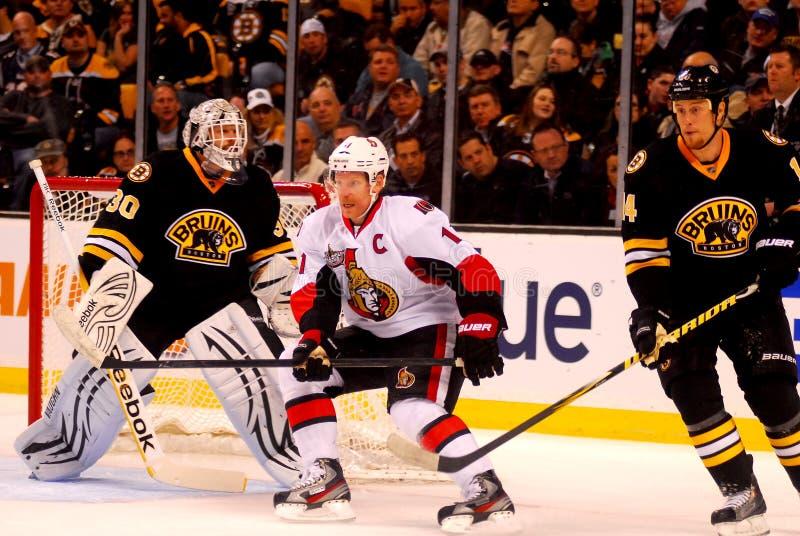Daniel Alfredsson Ottawa Senators Editorial Photography