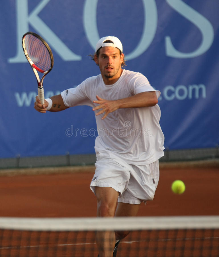 DANIEL KOELLERER, ATP TENNIS PLAYER stock image