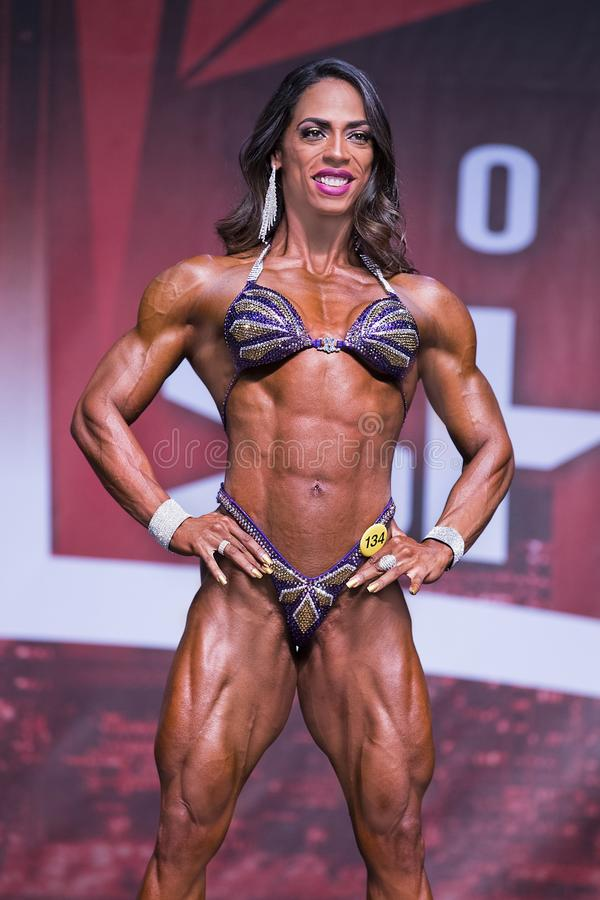 2 077 Physique Champion Photos Free Royalty Free Stock Photos From Dreamstime