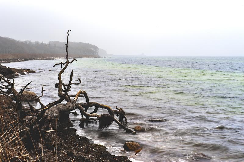 Stone beach sunset meditation tranquillity royalty free stock image