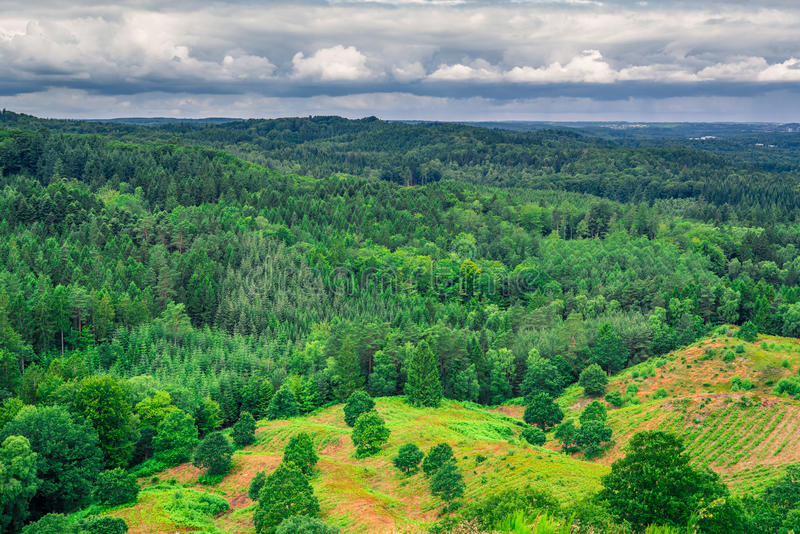 Danish landscape with green trees. Green trees in danish landscape and with dark clouds stock photo