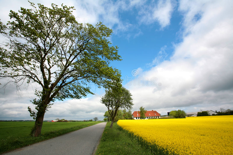 Download Danish landscape01 stock photo. Image of house, farm, landscapes - 1712498