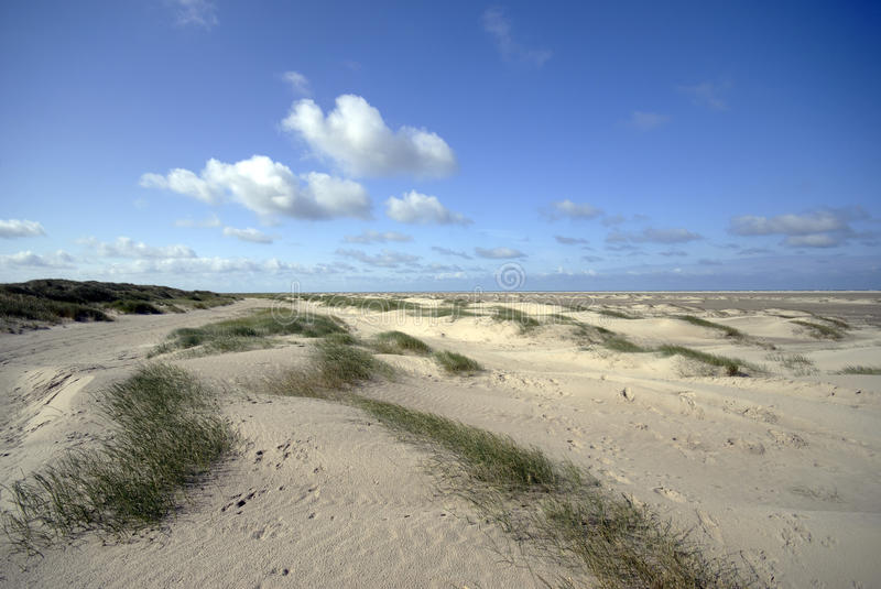 Download Danish Sand dunes stock image. Image of grass, outdoors - 9938857