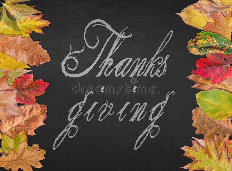 Dank die dagcitaat zoals prentbriefkaarbanner geven met de herfstbladeren royalty-vrije stock afbeeldingen