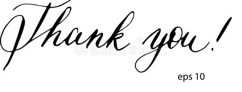 Dank u in vector Kalligrafieprentbriefkaar of van letters voorziende element van het affiche het grafische ontwerp Hand geschreve stock illustratie
