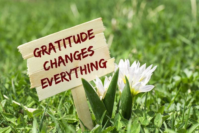 Dankbarkeit ändert alles lizenzfreies stockbild