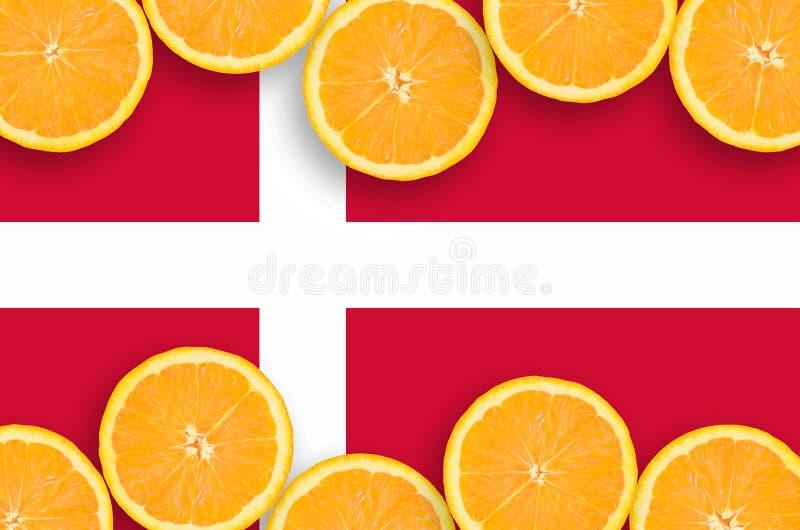 Danmark flagga i citrusfruktskivahorisontalram royaltyfria bilder