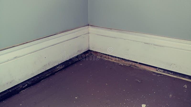 Danno dell'acqua della parete fotografie stock libere da diritti