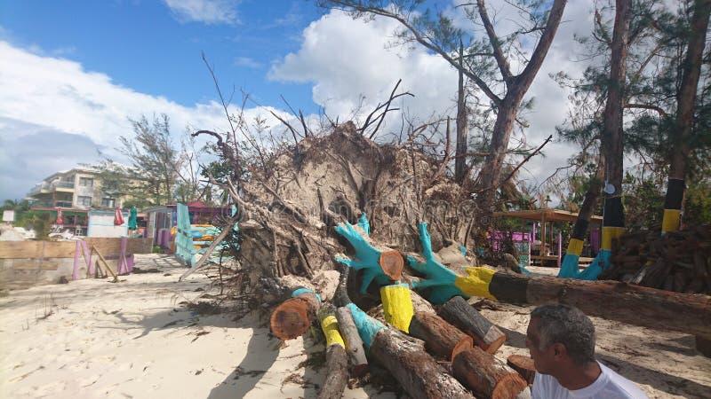 Danno di uragano immagini stock