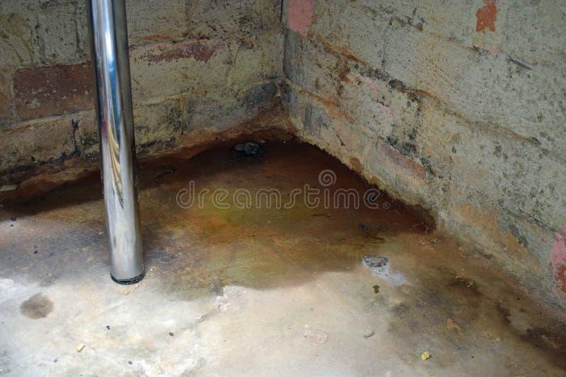 Danno e muffa dell'acqua immagine stock