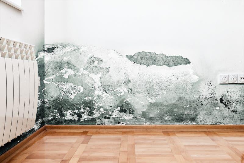 Dano causado pela umidade em uma parede na casa moderna imagens de stock