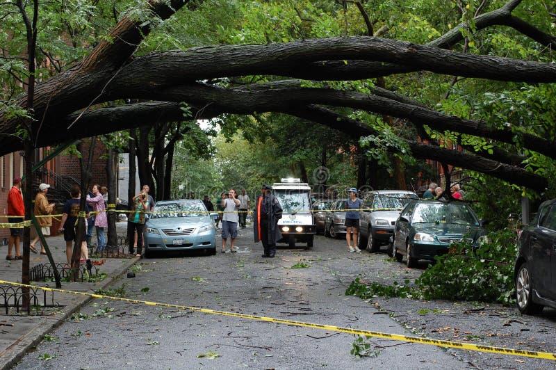 Dano de Irene do furacão fotografia de stock
