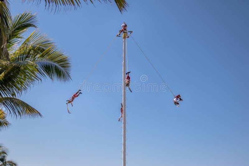 Dans av Papantlaen Reklamblad Voladores de Papantla - Puerto Vallarta, Jalisco, Mexico fotografering för bildbyråer