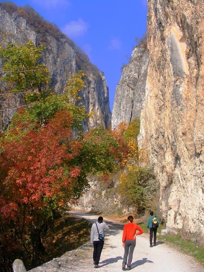 Dans des gorges d'Oltet, montagnes de Parang photo stock