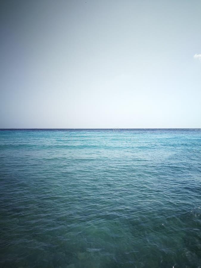 Dans l'horizon bleu et clair photos libres de droits
