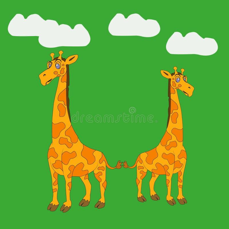 Dans l'image, une famille de deux girafes, girafes adultes illustration stock