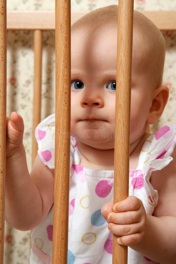 Dans la cage image libre de droits