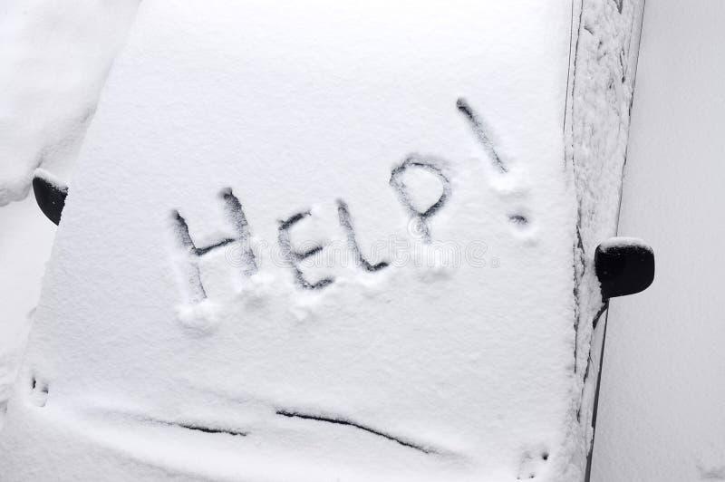 Dans la neige à une captivité I. photos stock