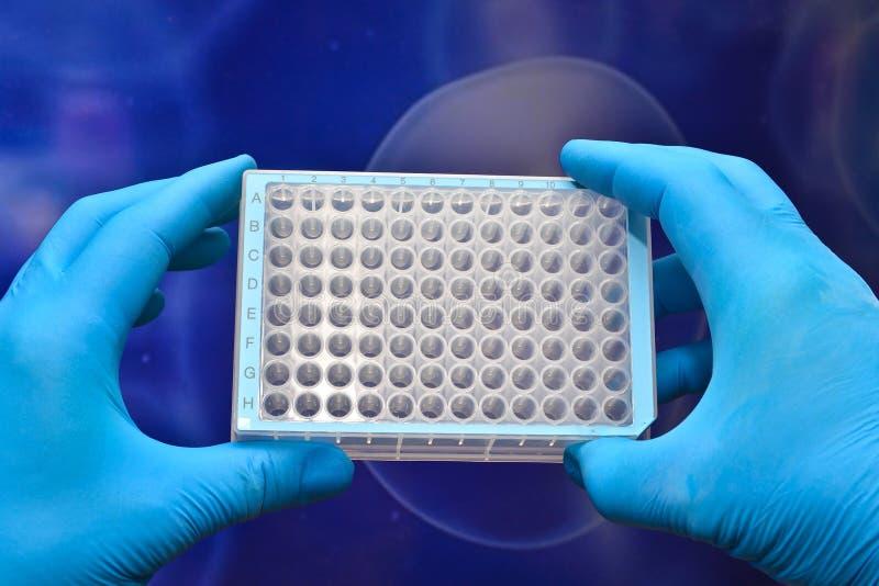 Dans la recherche biotechnologique, l'utilisation de la technologie cellulaire photos stock