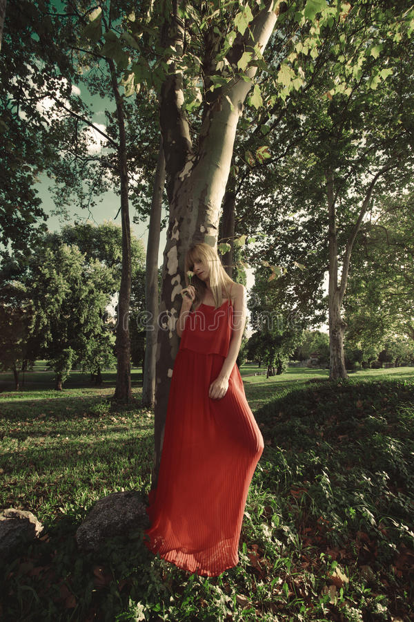 dans la robe rouge photos libres de droits