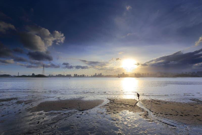 Dans la tombée de la nuit, le pêcheur féminin rassemblant des coquilles à la plage photos libres de droits