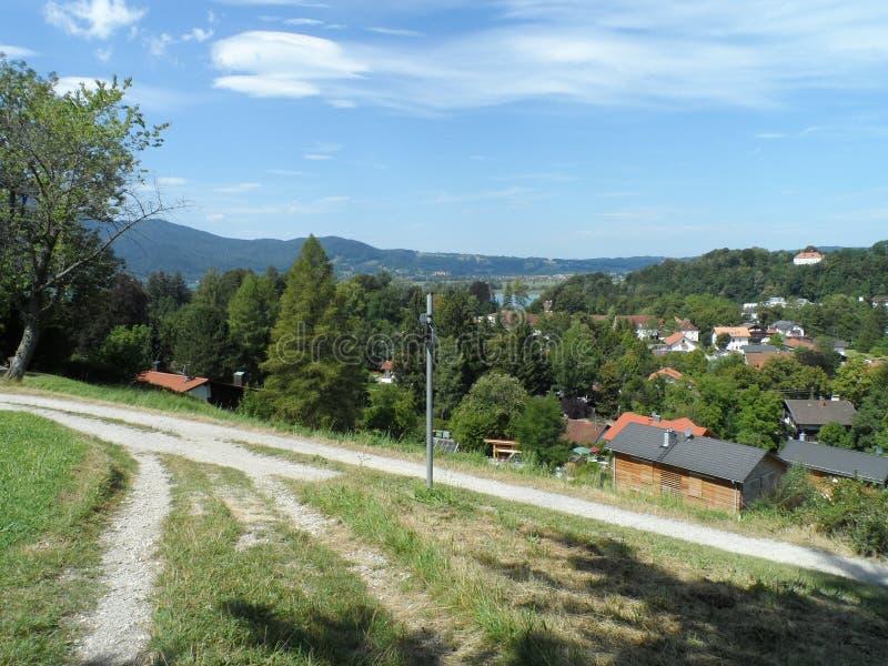 Dans le bois dans les Alpes photo stock