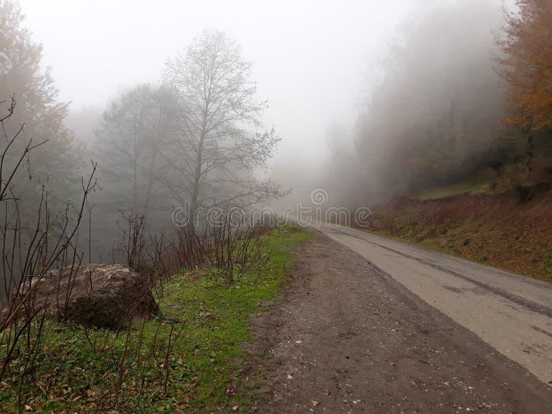 Dans le brouillard images libres de droits