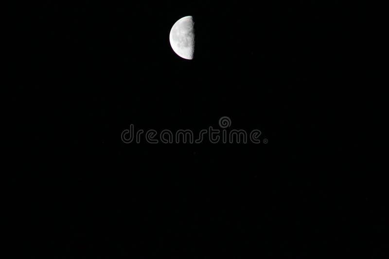 Dans le clair de lune photographie stock
