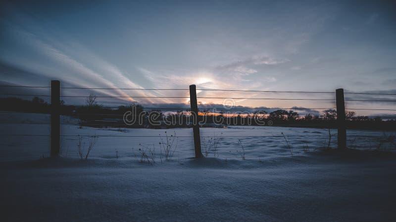 Dans le domaine pendant le coucher du soleil photos stock