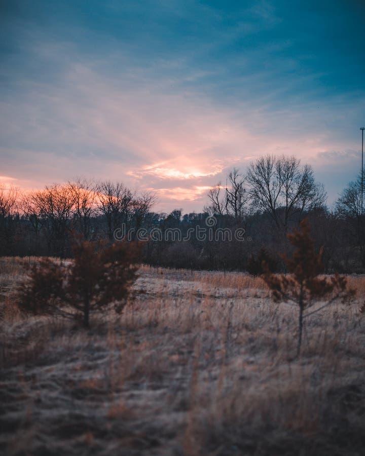 Dans le domaine pendant le coucher du soleil image libre de droits