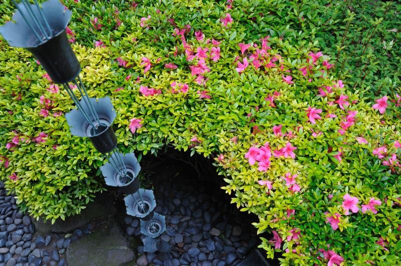 Dans le jardin japonais images stock