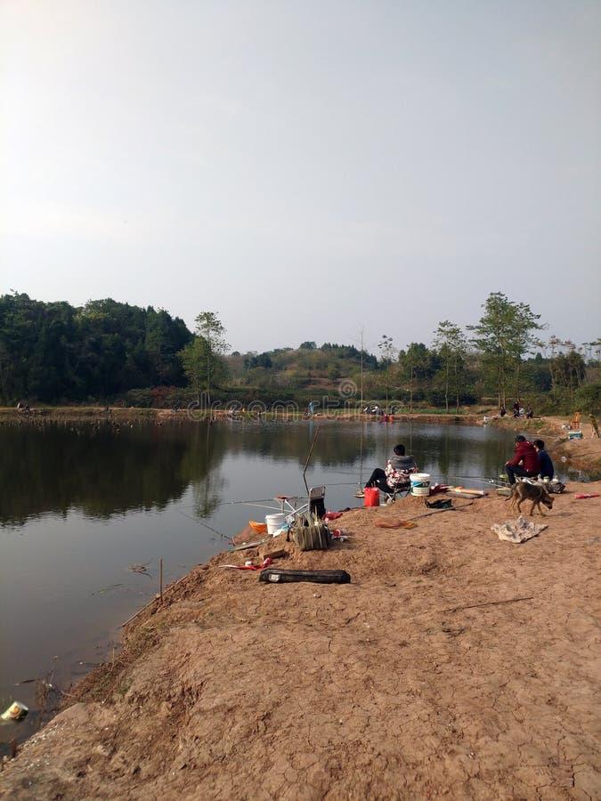 Dans le temps libre, les gens pêchent par le lac ; les chiens de chasse recherchent la nourriture image stock