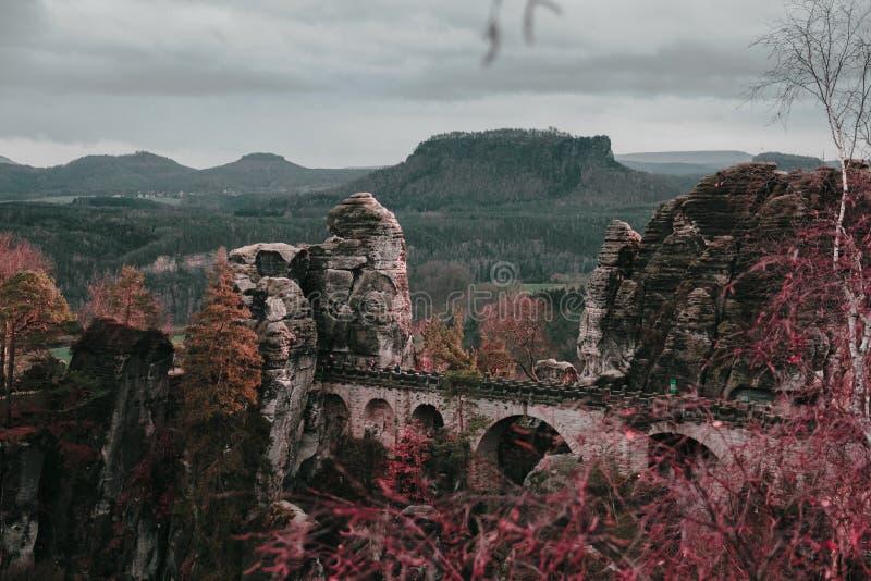 Dans les bois allemands image stock